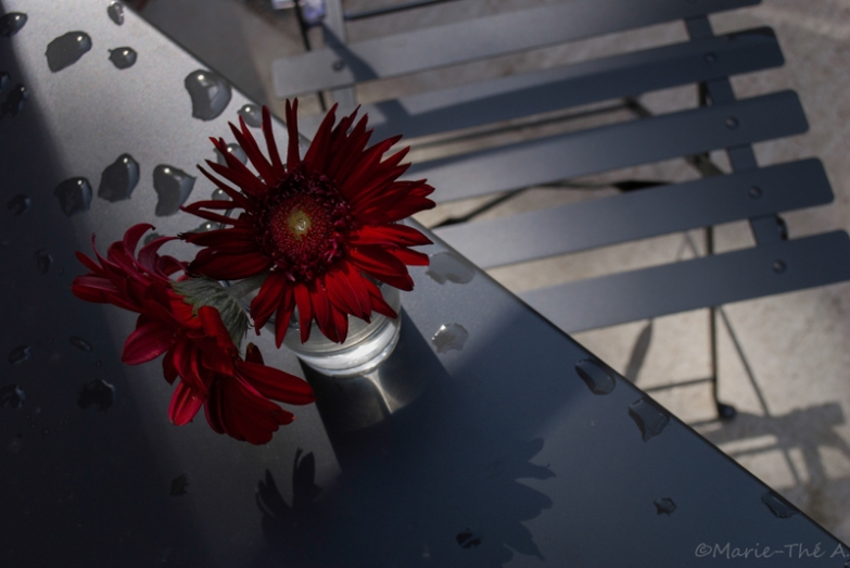 1-Fleurs
